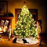 新年和圣诞节