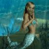 美人魚及警報器